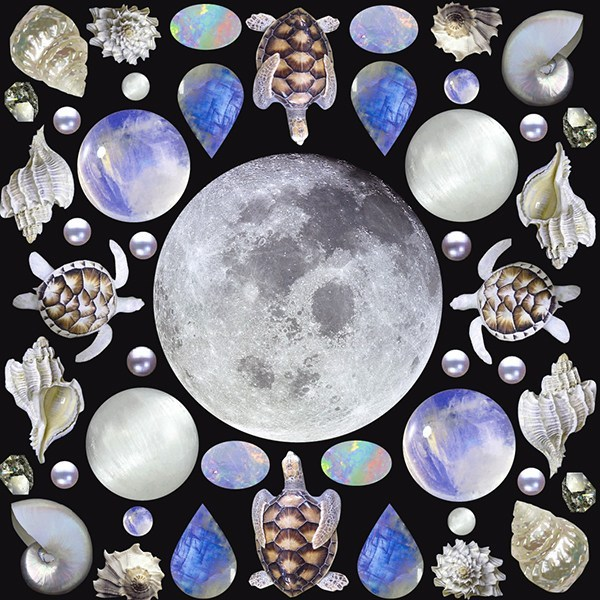 January 2020 Lunar Eclipse Tarotscopes Visual Magic Writing and Artwork by Sarah Faith Gottesdiener Modern Women Many Moons Planner Workbook Full Moon Horoscopes Tarot Readings