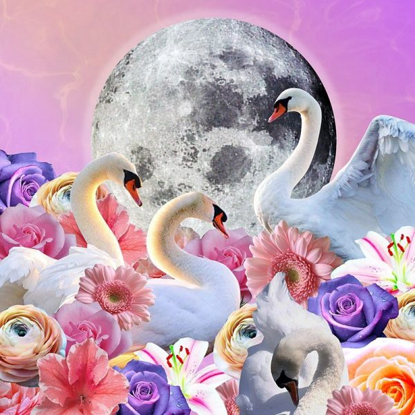 May 2020 Full Moon Tarotscopes by Sarah Faith Gottesdiener of Modern Women | Visual Magic | Many Moons